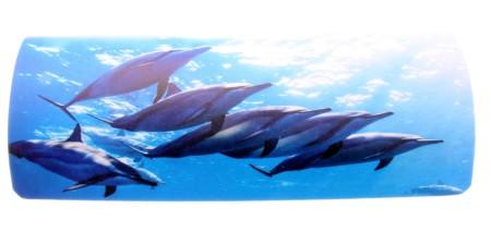 H8001-A/7 dolphin (215620)